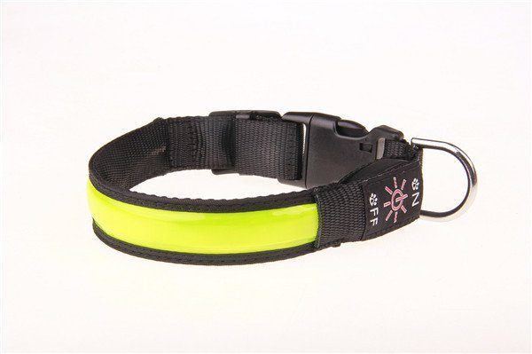 grönt lysande hundhalsband