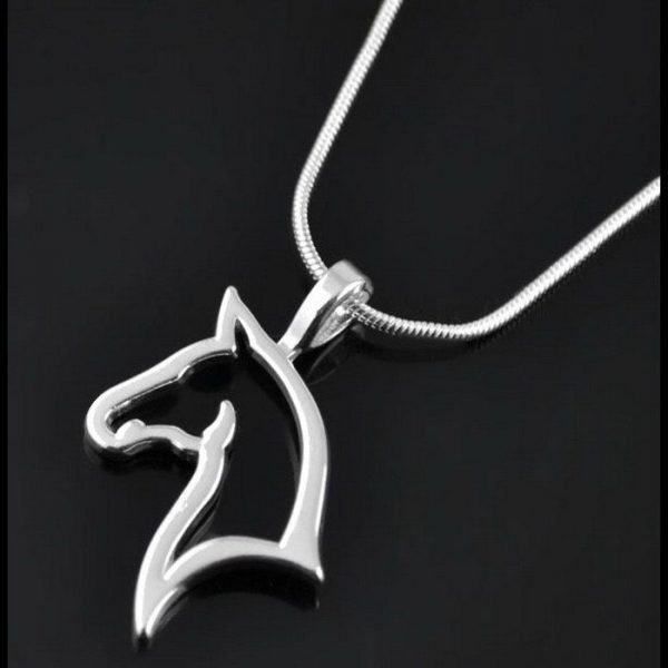 Silvrigt häst halsband